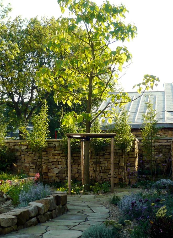 hausbaum infos tipps und beispiele f r die auswahl des hausbaums. Black Bedroom Furniture Sets. Home Design Ideas