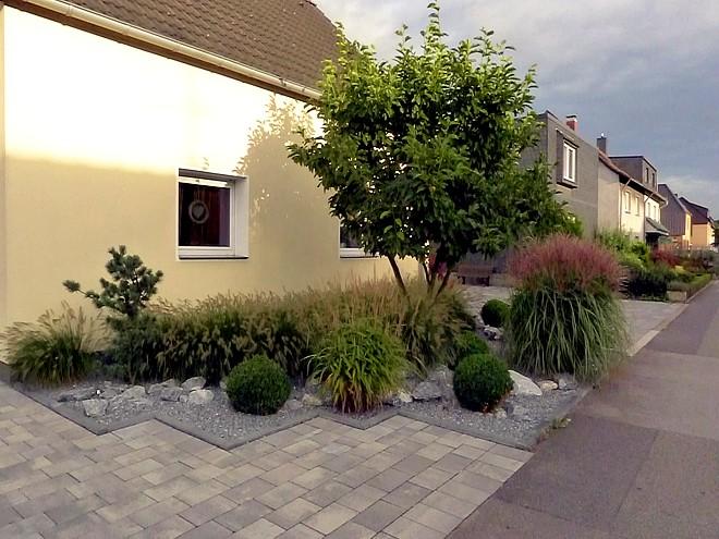 Vorgartengestaltung Mit Gräsern, Buxbaumkugeln Und Naturstein