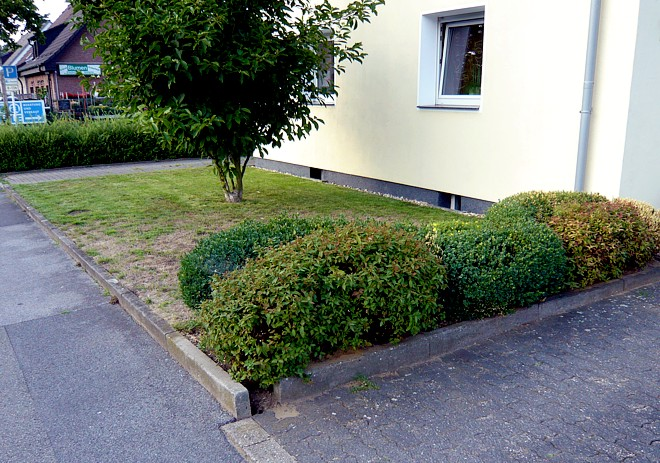 Pflegeleichte Vorgartengestaltung mit Gräsern, Bux und Felsen